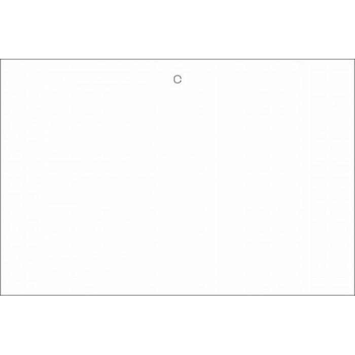 EN13001GA005 - Lower Door Decal - White