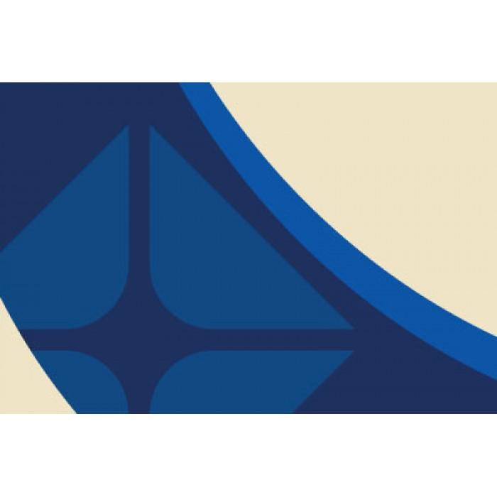 EN13001GA136 - Lower Door Graphic - Arco