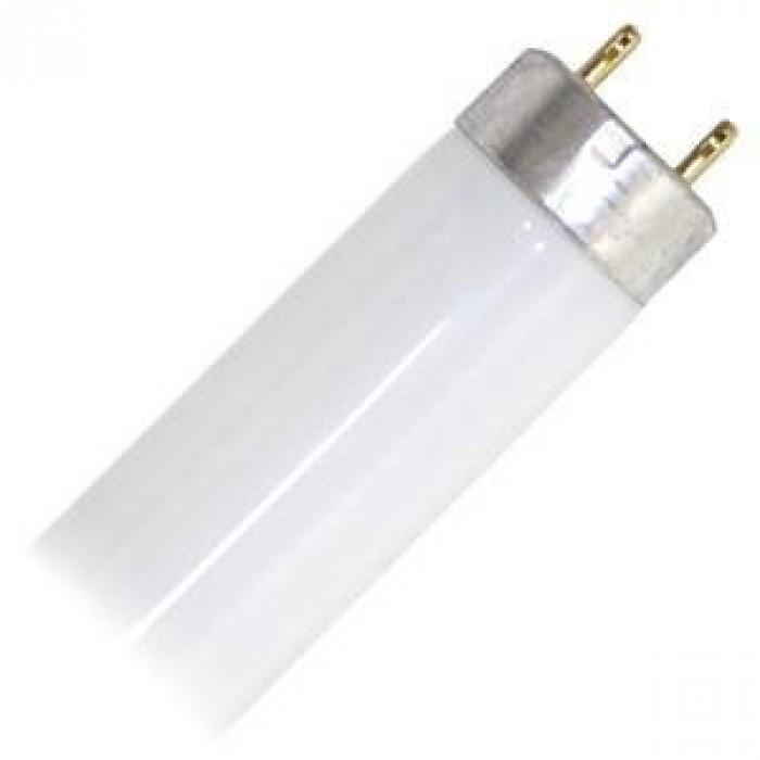 Q10878-04 - Fluorescent Lamp